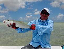 Bonefishing charters with DB Tours Turks and Caicos Islands